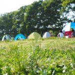 【2018】上大島キャンプ場でお花見はどう?子供と一日楽しめる穴場だよ!