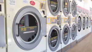 ぬいぐるみのダニ対策には乾燥機と掃除機がおすすめ