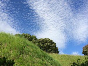 いわし雲とうろこ雲って同じ?