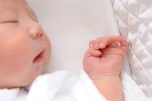 生まれてから生後数カ月までは全身の毛が濃い!