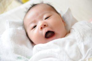 赤ちゃんのボーボー姿もとってもかわいい!